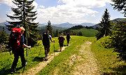Wanderurlaub im Oberpfälzer Wald